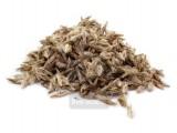 Мордовник шароголовый (1 кг)